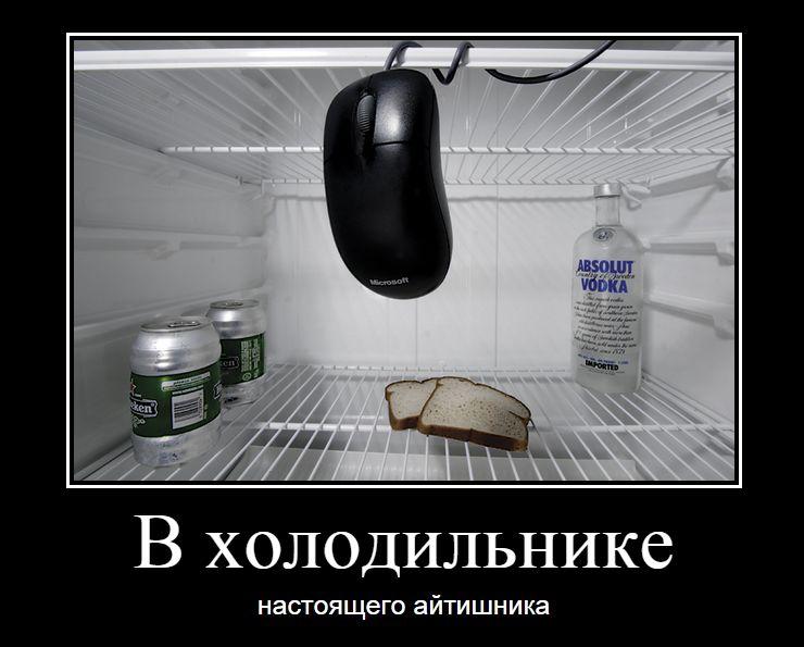 РИНАТИВАТОР 051. В холодильнике настоящего айтишника