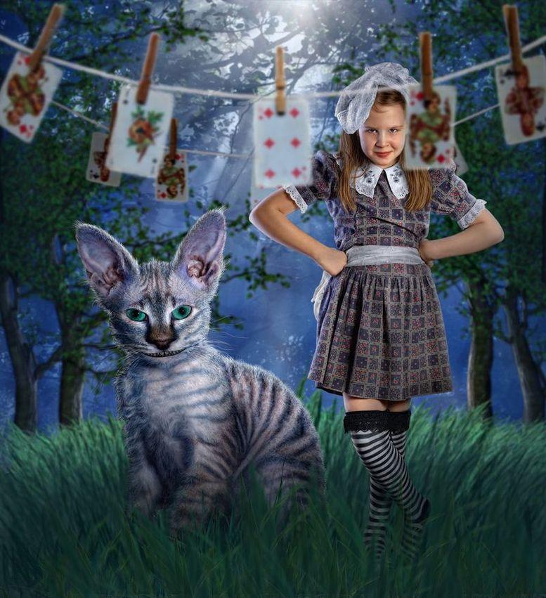 Алиса в Стране Чудес от Дмитрия Лаудина