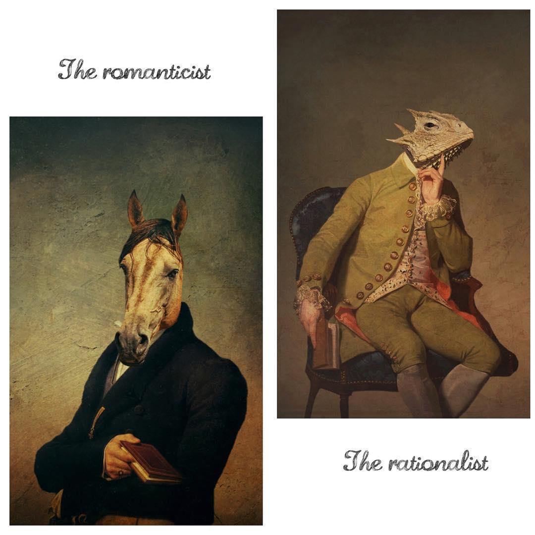Конь в пальто, а также прочая скотина от Jennifer Fine