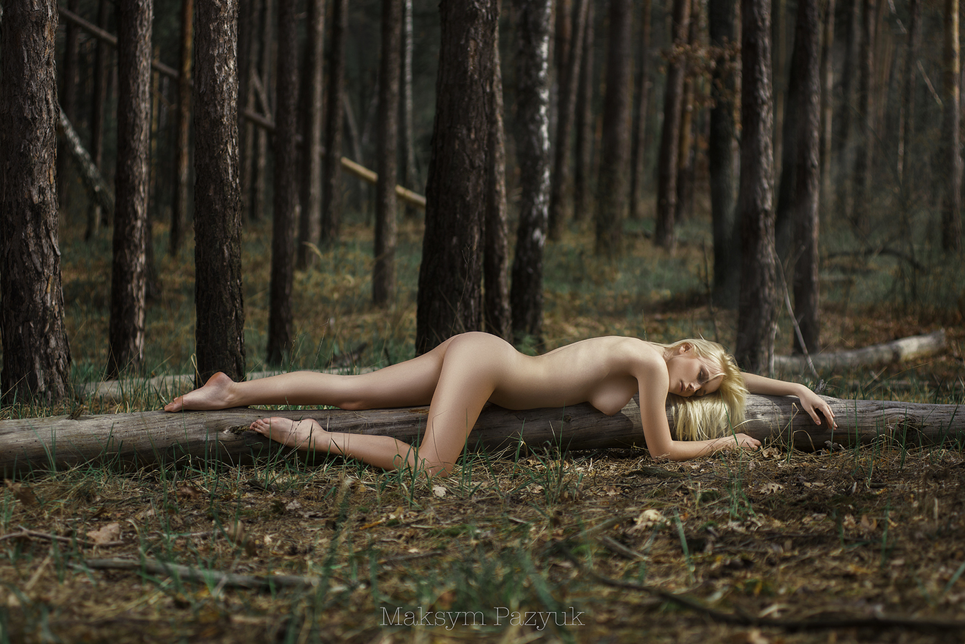 Nude woman forest images, stock photos vectors