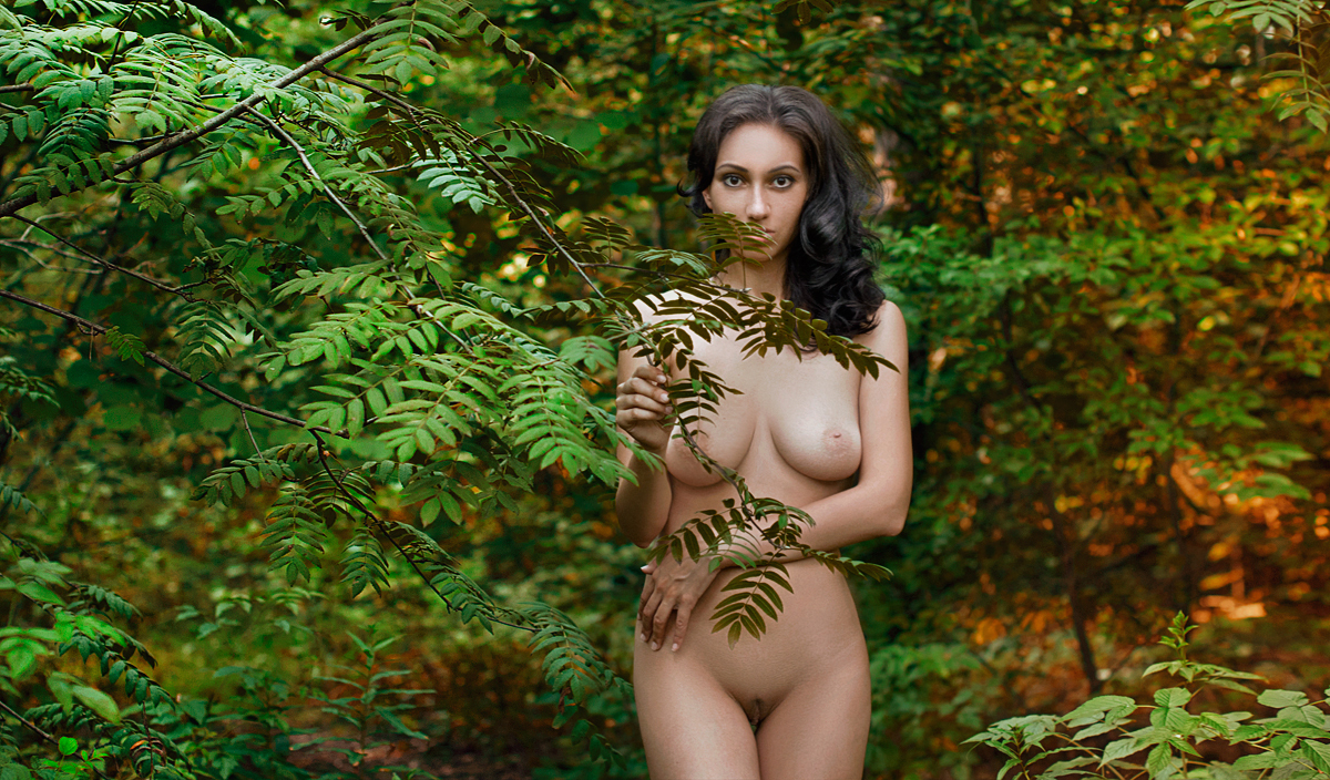 Forest Busty Communication