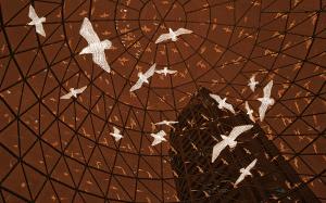 3D-seagulls