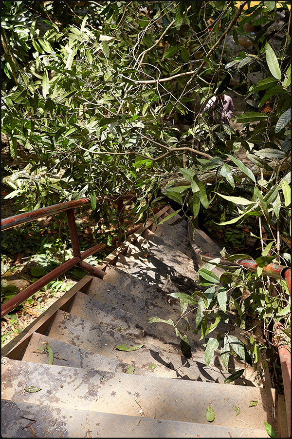 138-307camb_Phnom Kulen0013.jpg