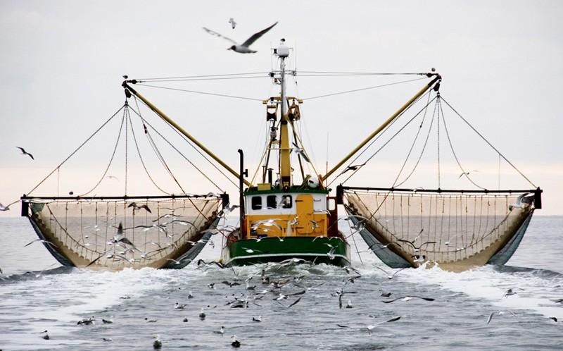 морской рыболовный трал