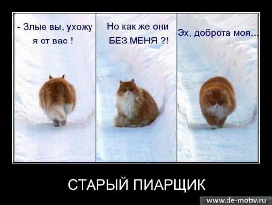 http://ic.pics.livejournal.com/pr_maslennikov/10241521/206150/206150_600.jpg