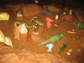 Крокодилы на Днище
