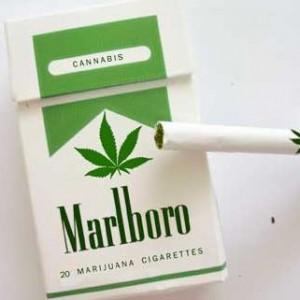 marijuana-marlboros_thu