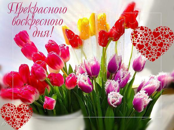Открытки доброго воскресного утра прекрасного дня