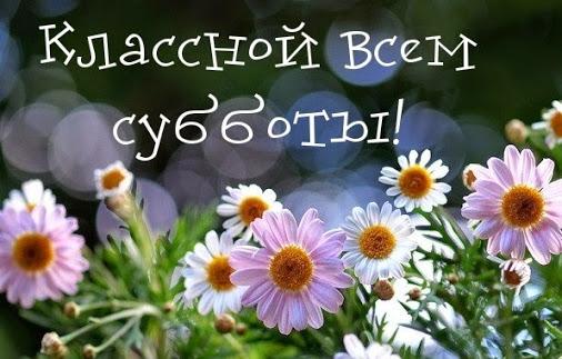 Растения из красной книги Самарской области