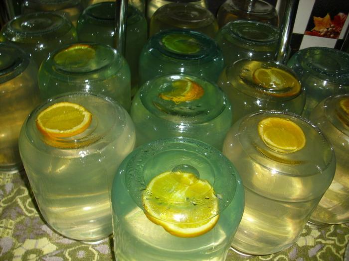 Как закатать березовый сок в домашних условиях без сахара