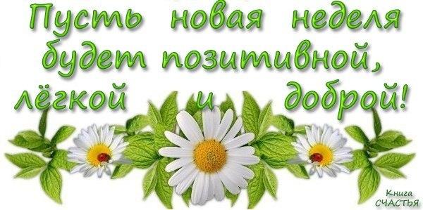 неделя _нов
