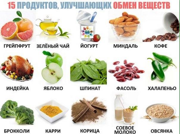 obmen-veschestv