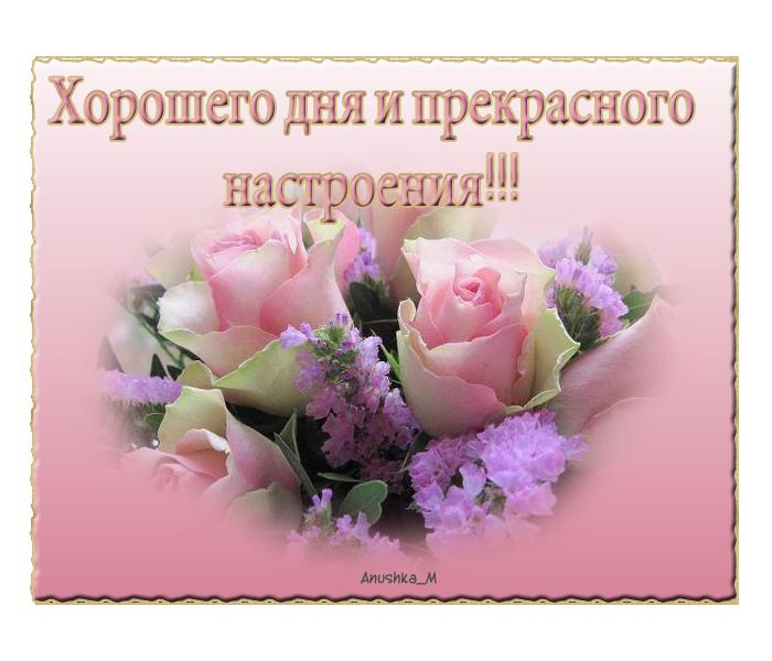 день_настр