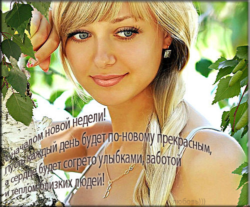 нед_нов