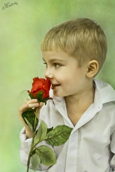 мальчик_роза_