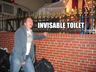 invisable toilet