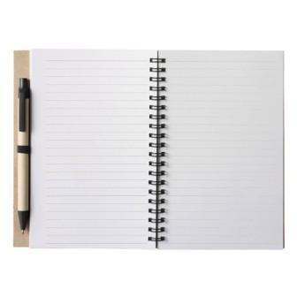 Запиши каждую идею