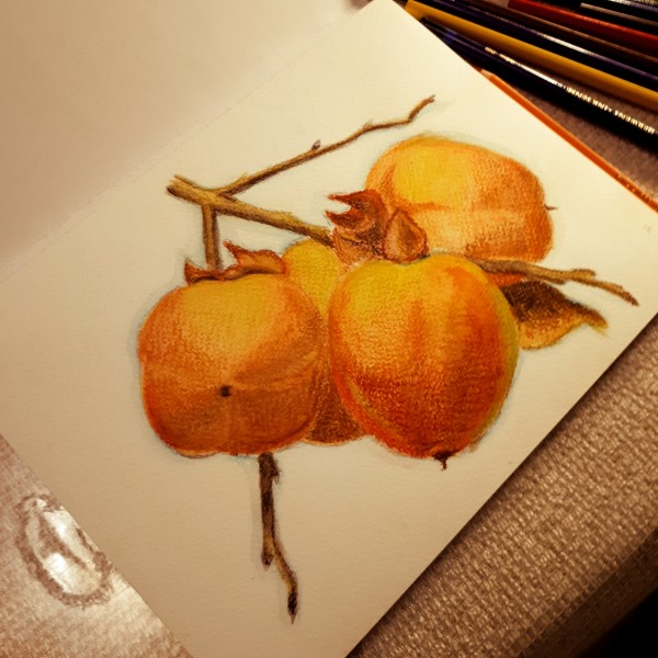 apple_quince_by_belcus_dd9g7tm