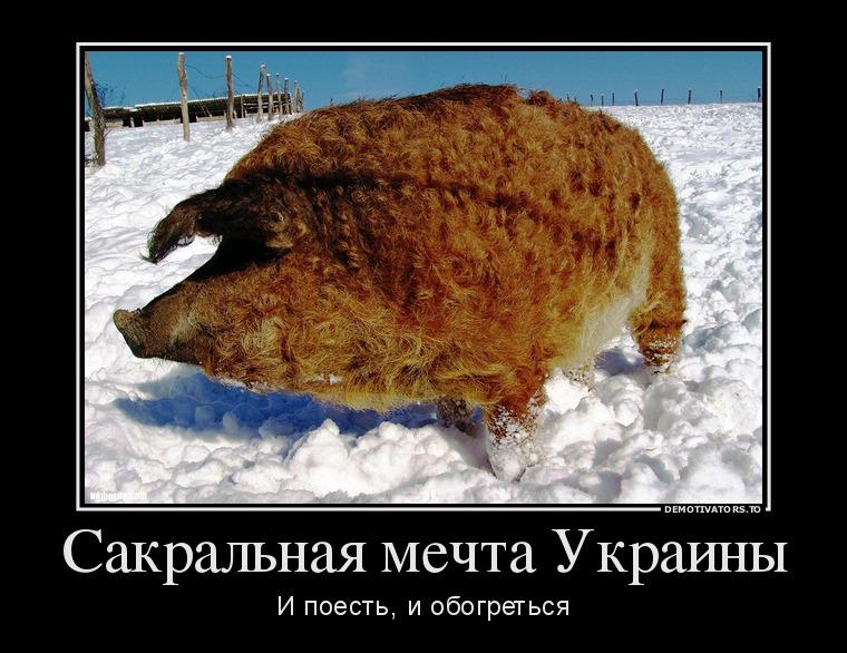 Бывшему главе минобороны украины
