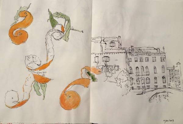 Orange peels and ponte Sant'Agostin