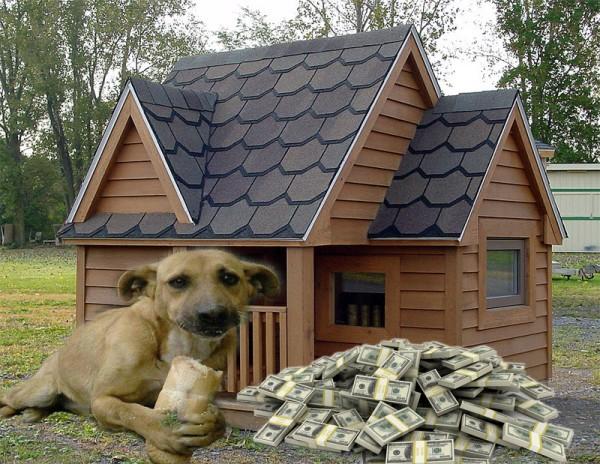 2450-154011-cedar_doghouse