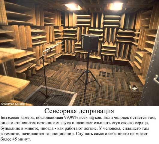 Самая тихая тишина - комната где слышно стук сердца фото, необычное