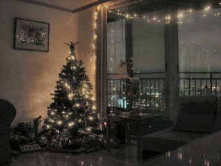 Our Christmas Scene