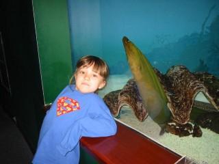 Maya and the Green Moray Eel