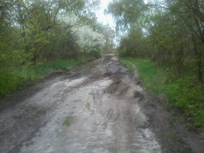 дорога 2