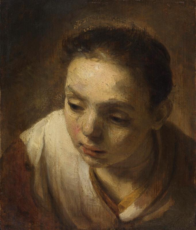 Рембрандт Харменс ван Рейн.  Лейденская коллекция, США