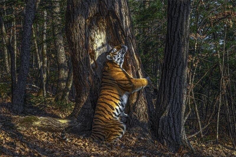 Фото: Сергей Горшков