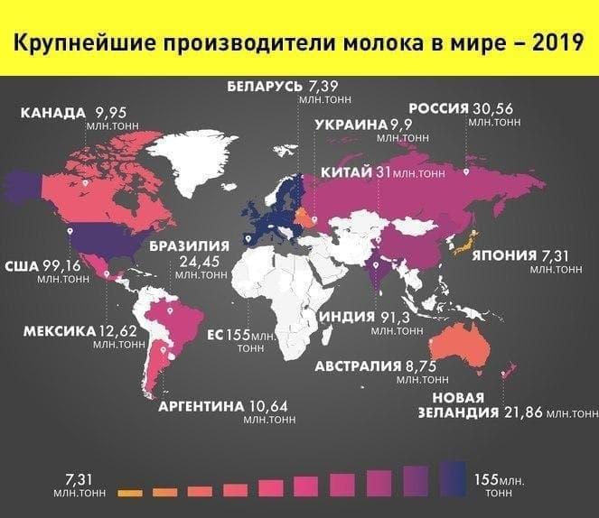 Страны лидеры по производству молока. Иллюстрация - СТранокарты