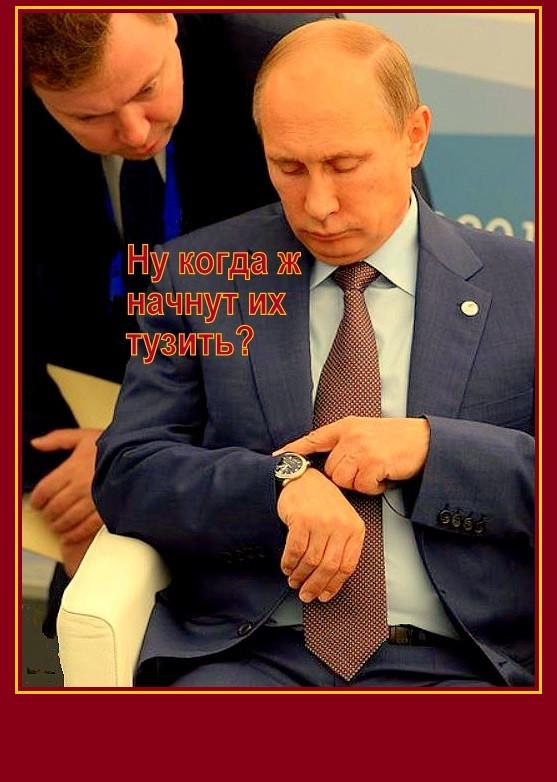 Putin=pora=uj