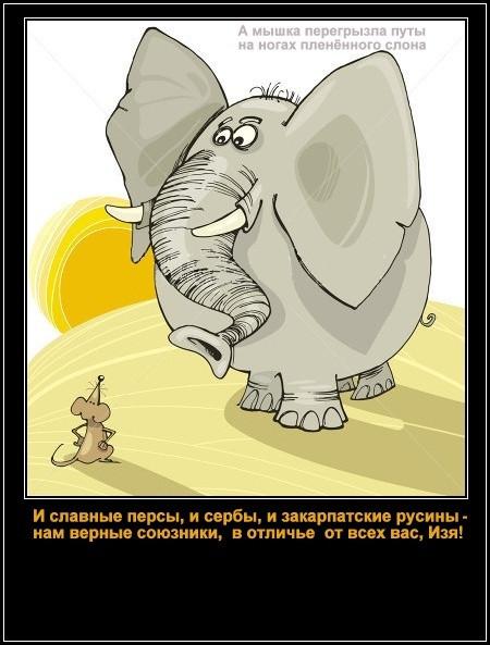 slon-mysh