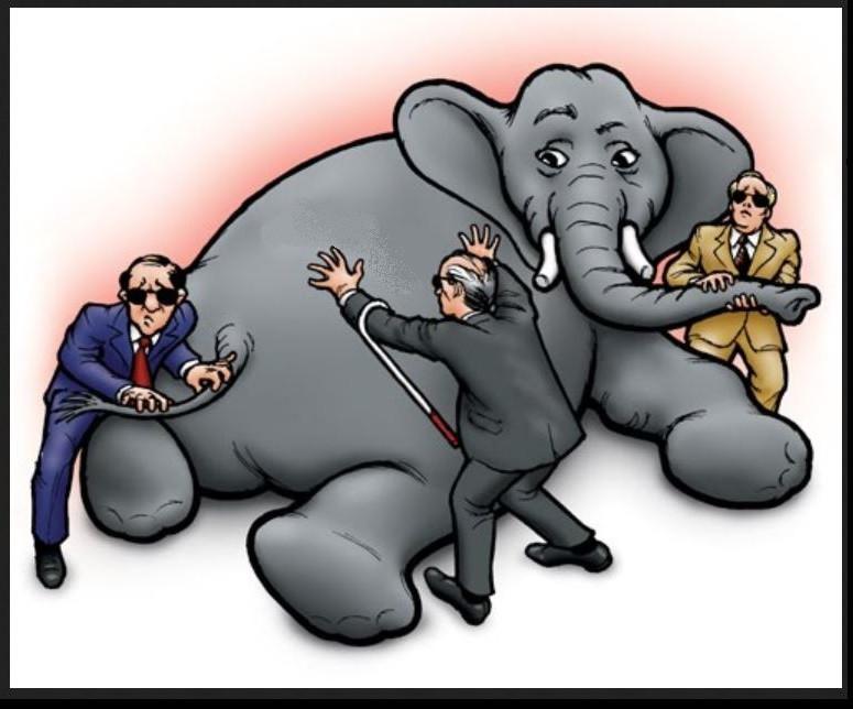 Slon-slepzy