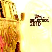 VA - Selection 2010