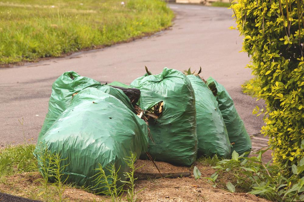 Будут ли штрафовать водителей за выброшенный мусор?