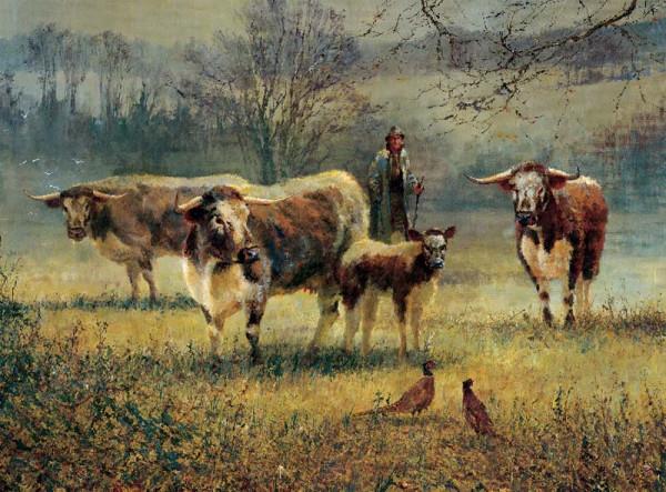 200 longhorn Cattle800px