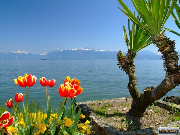 Edenpics-com_005-073-View-on-the-Dent-d-Oche-and-the-whole-chain-of-mountains-surrounding-the-lake