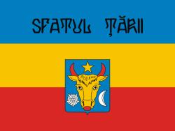 250px-Flag_of_Sfatul_Tarii.svg