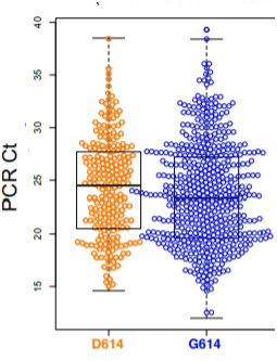 PCR Ct – чем выше этот показатель, тем НИЖЕ вирусная нагрузка. Каждая точка это данные тестирования одного человека. Жирная чёрная горизонтальная линия – среднее значение PCR Ct.