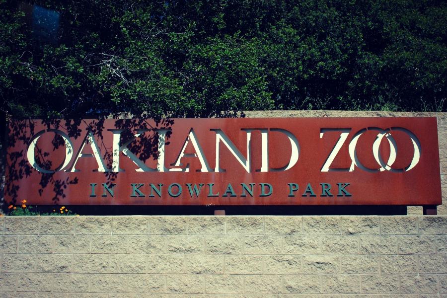 Zoo01.jpg