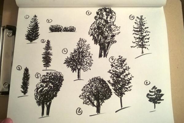 Sketch-02.jpg