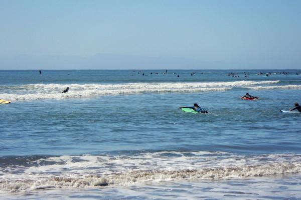 Surf01.jpeg