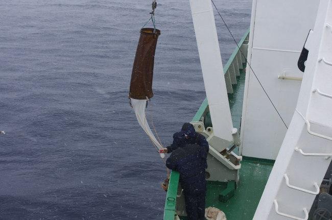 Орудия лова планктона фото