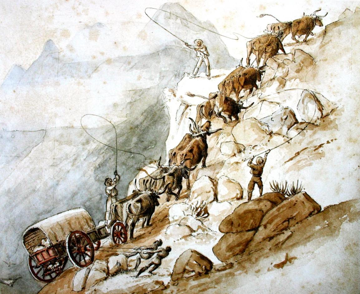 Outeniqua Mtns near George (1840)  Charles_Michel