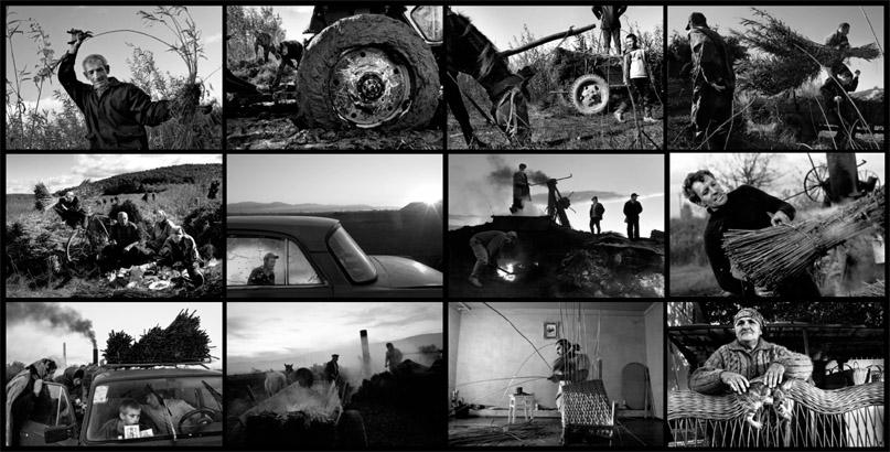 «Лучший фотограф 2009»: галерея победителей