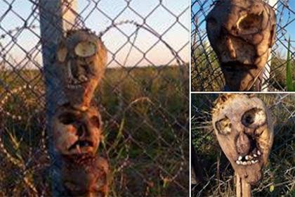 Пограничники из Венгрии отпугивают нелегалов экзотическими чучелами