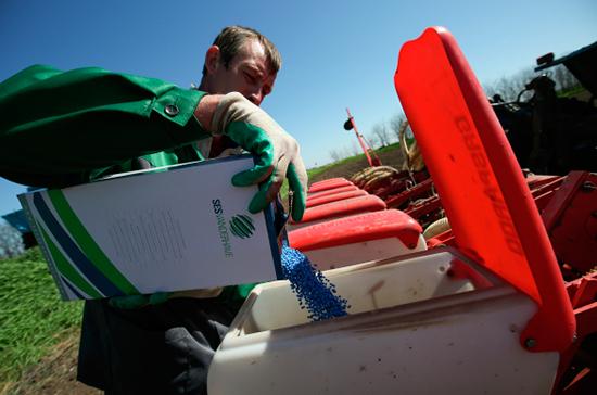 Фото: Работник загружает в пневматическую сеялку семена сахарной свеклы, обработанные от вредителей, во время посевной в станице Ладожской