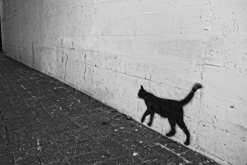 graffiti-3062069_960_720